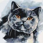 "Картина по номерам ""Кот"""